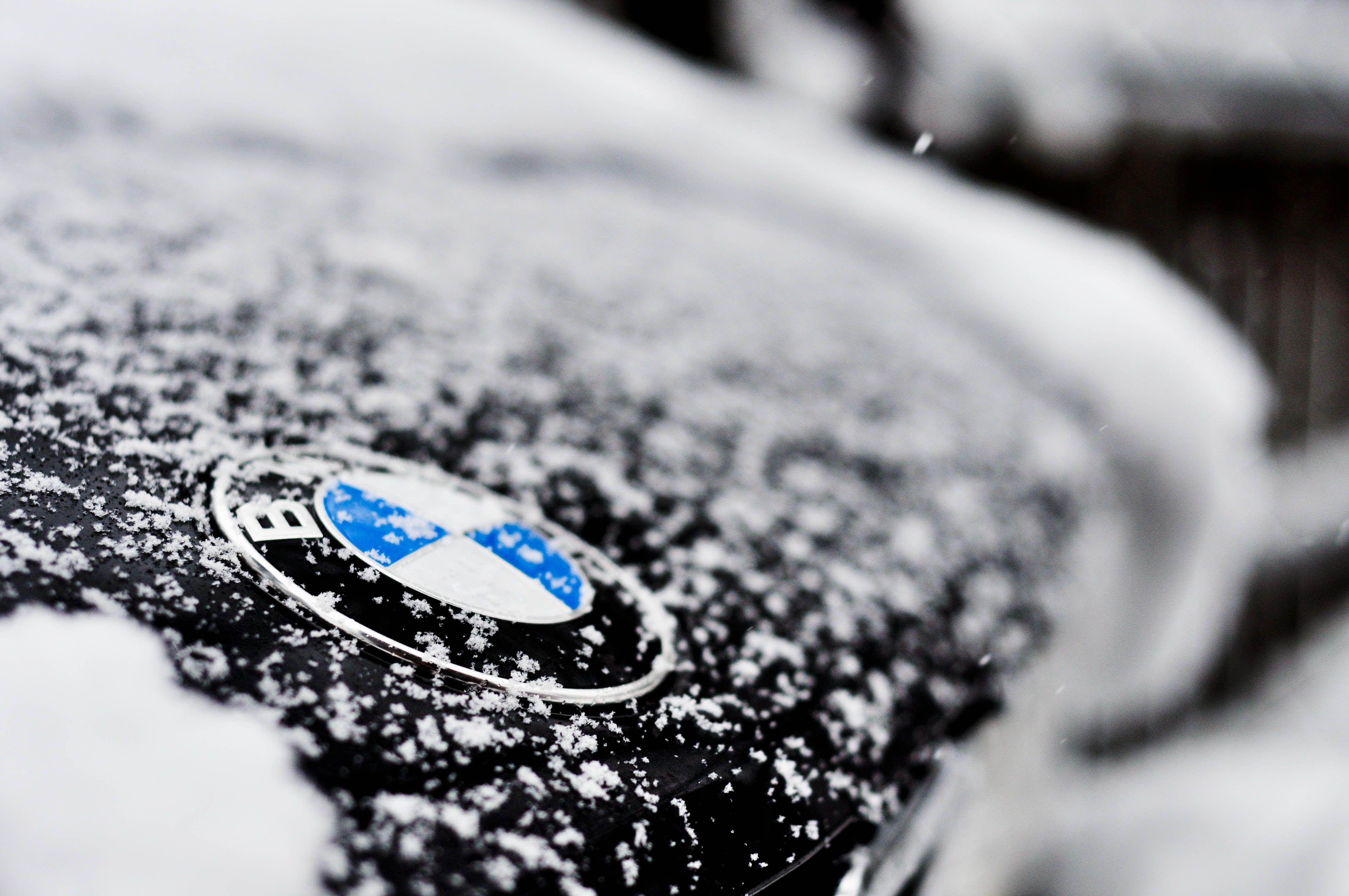 1000 Images About Bmw Logo On Pinterest: Winter BMW Logo - Badge - Emblem
