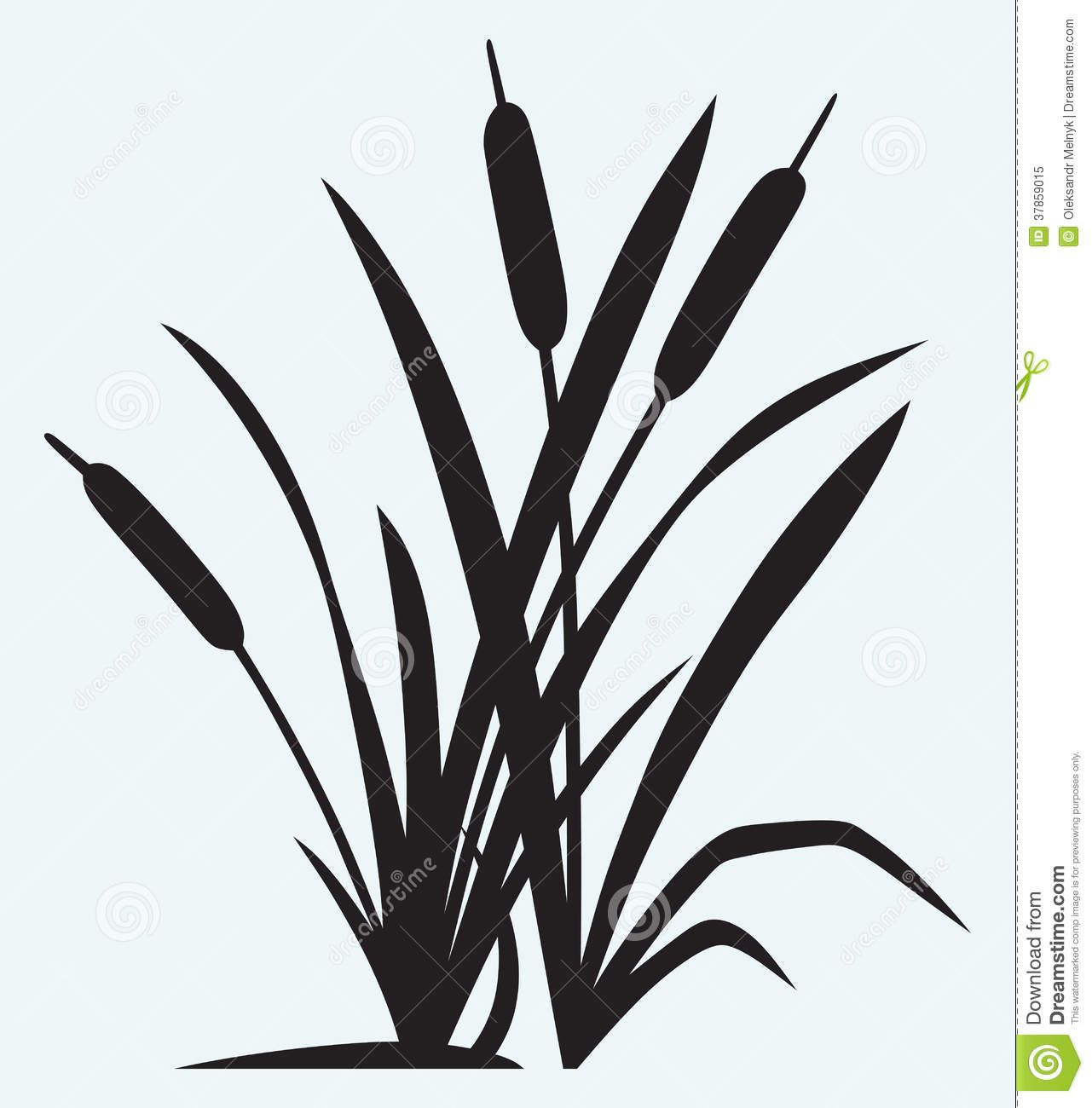 Dandelion Wall Art Stickers Cattails Vector Cattail Silhouette Stock Scan N Cut