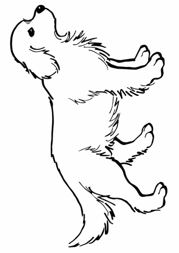 Http Www Momjunction Com Print Coloring Image Pageid 91045 Print 2014 09 The Golden Retriever Dog Coloring Page Animal Drawings Color