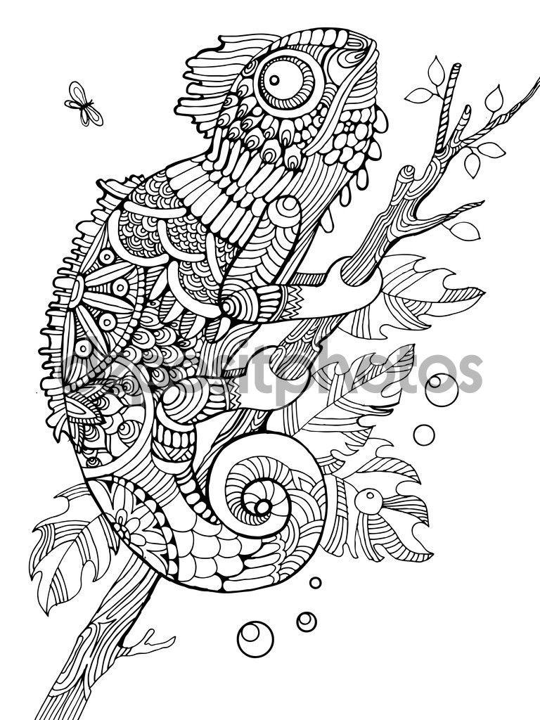 Imagen relacionada | reptiles | Pinterest