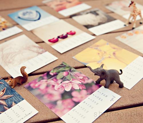 Desktop Photo Calendar by shannonblue photography