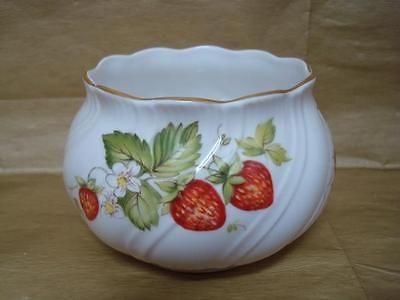Queens / Rosina Ringtons Limited Fragaria virginiana abierto Sugar Bowl