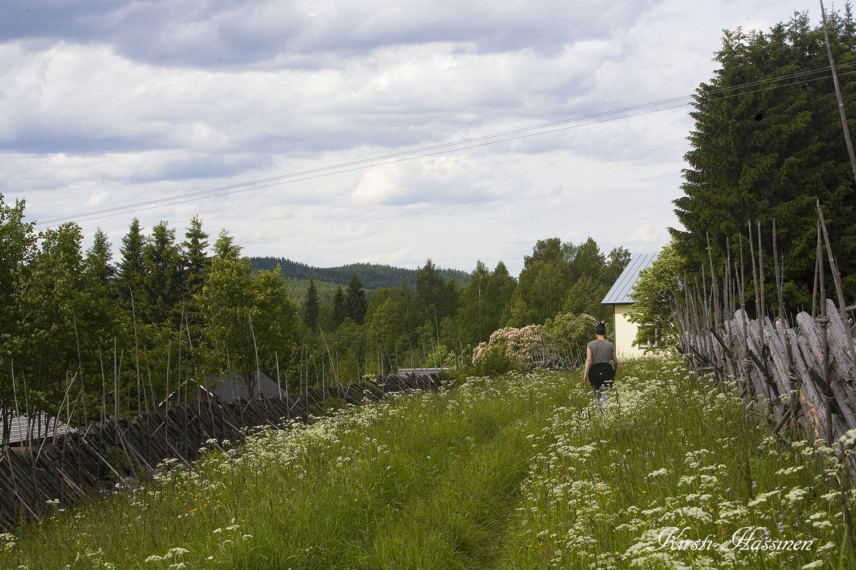 Maatiaiskotieläimiä, kohtuutta  ja luontoa käsittelevä blogi