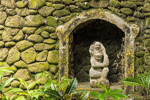 Monkeys in the Grotto Ubud Bali Indonesia March 2014