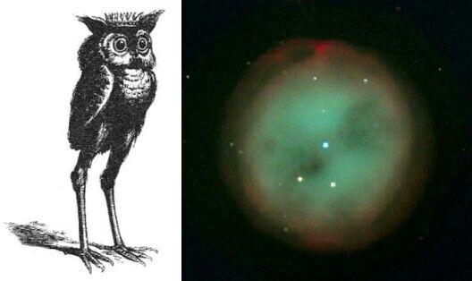 Goetic - Stolas - Owl Nebula