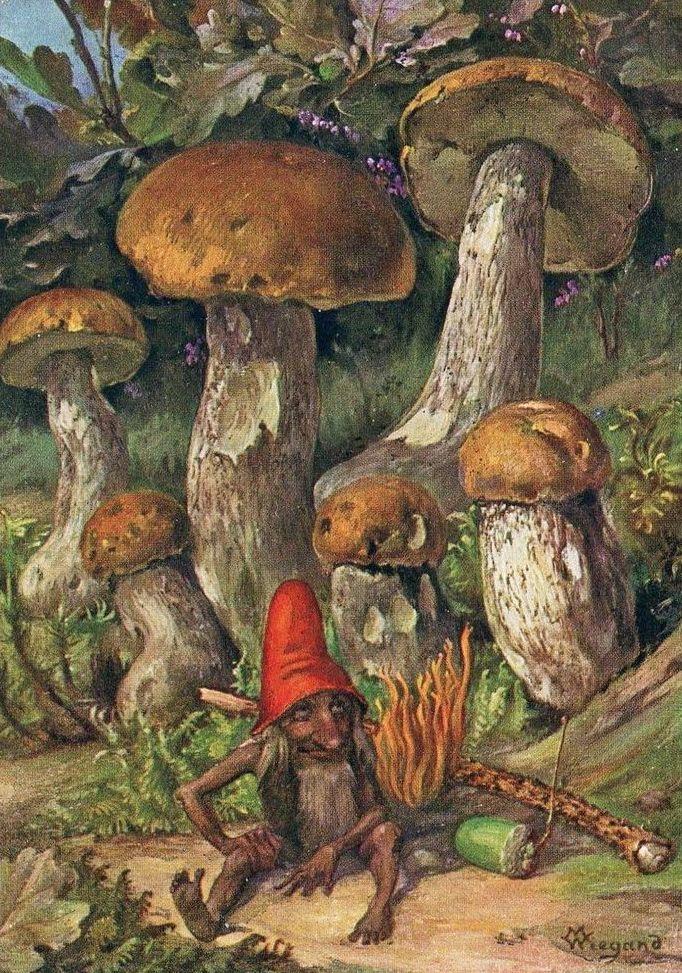 GNOME BY MARTIN WIEGAND