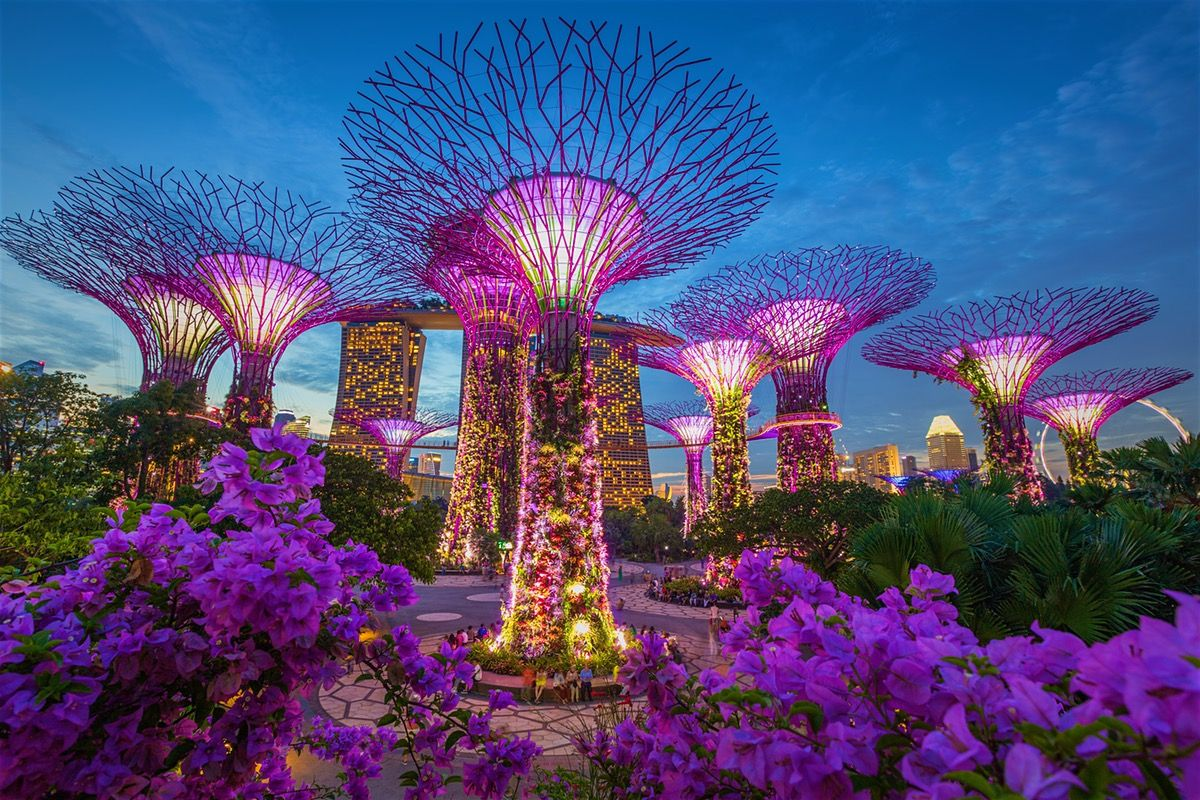 ec61f9c85cd0f31fd2c586272c9b3213 - How Long To See Gardens By The Bay