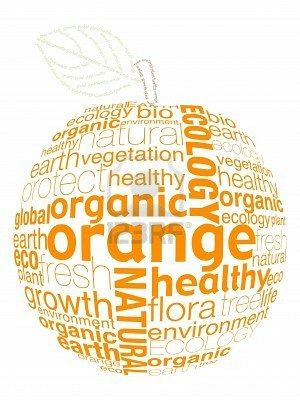 orange fruit shapes from letters Stock Photo - 8007882