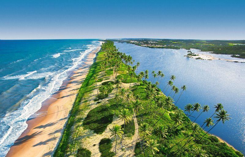 Descubra A Costa Dos Coqueiros Na Bahia Aluguetemporada Bahia