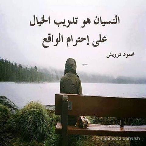 محمود درويش Arabic Poetry Cool Words Beautiful Quotes