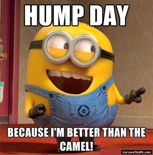 Hump Day Minion Minion Minions Wednesday Hump Day Humpday Wednesday Quotes Happy Wednesday W Funny Good Morning Memes Funny Minion Quotes Funny Memes Sarcastic