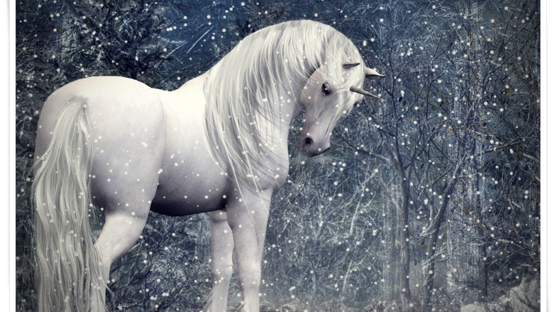 mystical unicorn in the snow desktop nexus wallpapers