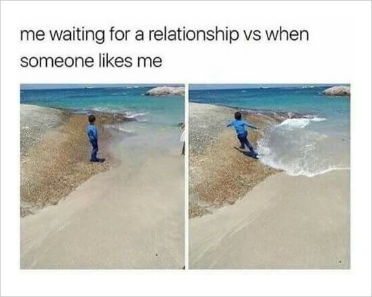 Relationship Funny Memes Funny Pictures Single Memes Pictures