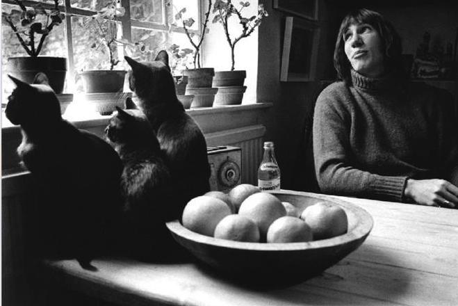 """El álbum """"Animals"""" de Pink Floyd se estrenó en 1977 junto con un guiño enorme al libro """"La rebelión de la granja"""" de George Orwell."""