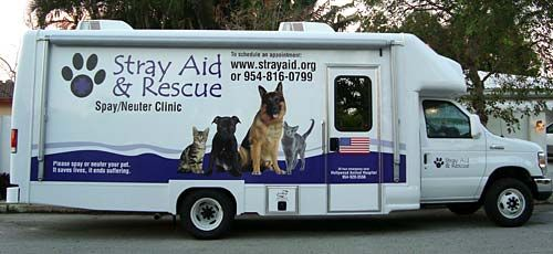Stray Aid & Rescue Mobile Spay/Neuter Clinic Dog clinic