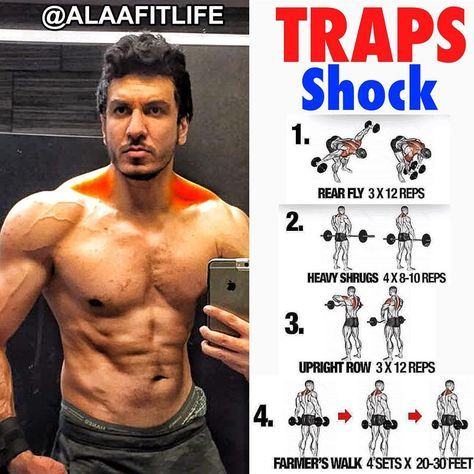 Pin By Jaiden Campbell On Training Traps Workout Shoulder Workout Workout Programs