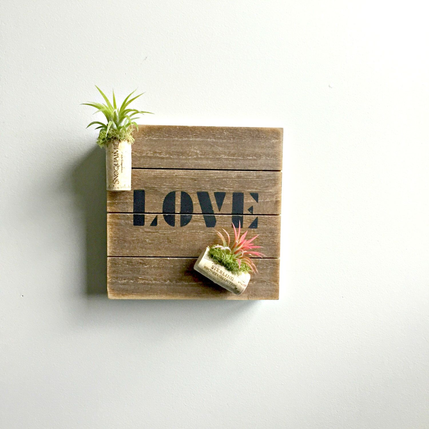 2 air plant corks mounted on distressed wood sign with magnets