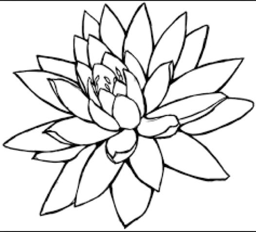 Spiff pencil sketch