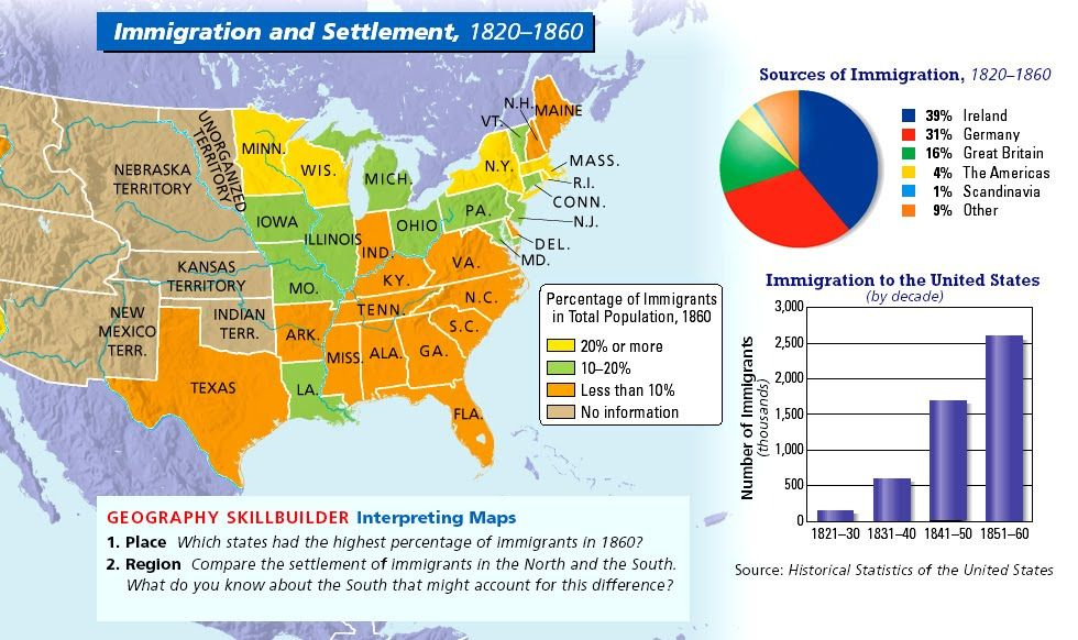 Immigration to US in the 1800s | US History | Pinterest | Us history ...