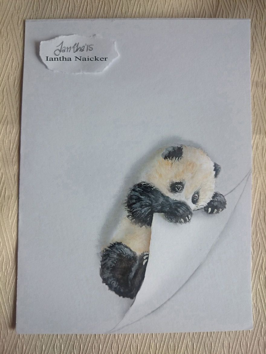 My Animal Drawings Try To Leap Off The Page | Pinterest | Hearing ...