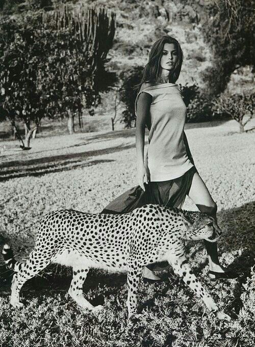 There S An Animal In Every Woman Walking With Her Restless Within Her Or Asleep Deep Inside Her Though She Herself May Safari Chic Black And White Photo