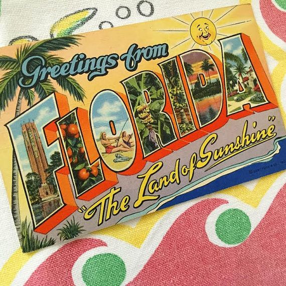 Letter Greetings Entrancing Vintage Florida Postcard Large Letter Greetings3Floridagirls .