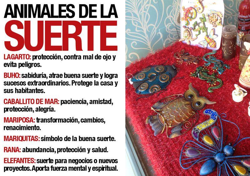 Best 25 amuletos de buena suerte ideas on pinterest - Rituales para sacar la mala suerte ...