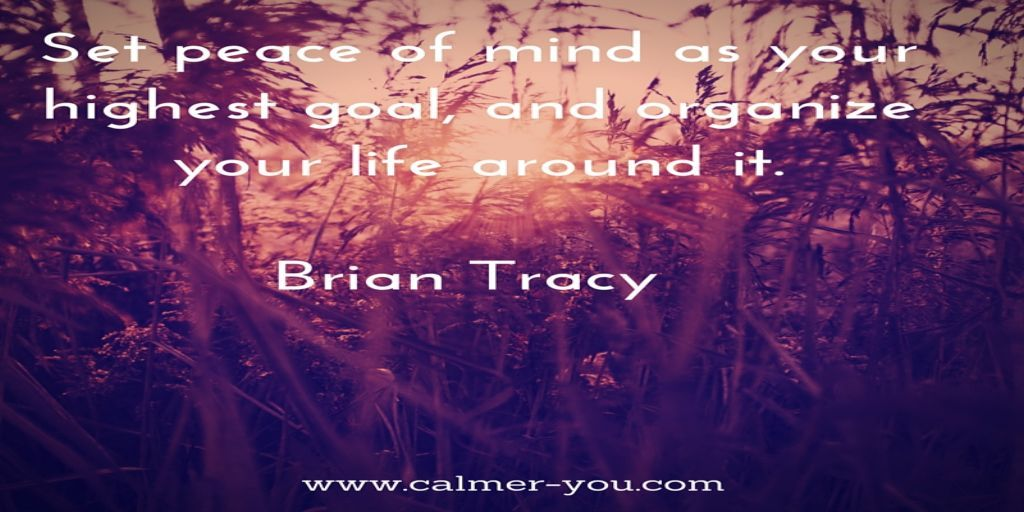 Set peace of mind as your highest goal, and organize your life around it. ~ Brian Tracy #calmeryou