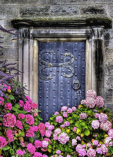 Unbelievably gorgeous custom made door that shines behind the beautiful color of the flowers in front of it.