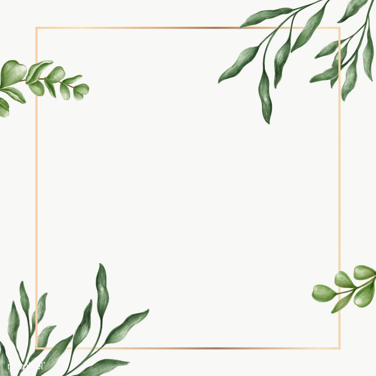 Green Leaves Frame Transparent Png Premium Image By Rawpixel Com Noon Vector Vectorart Digita Green Leaf Background Leaf Background Floral Border Design