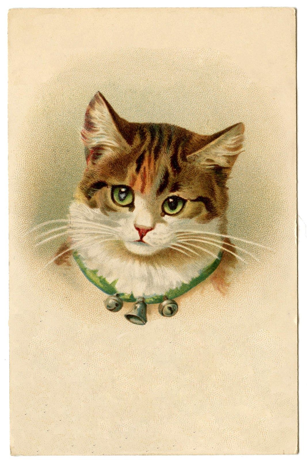 vintage pictures cute kitty cat with bells graphics fairy