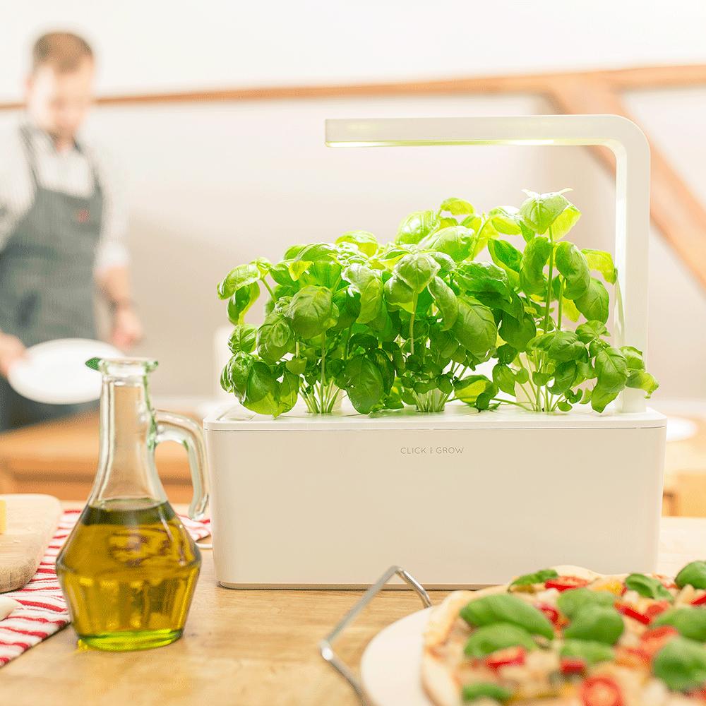 The Smart Garden 3 | Indoor vegetable gardening, Herbs ...