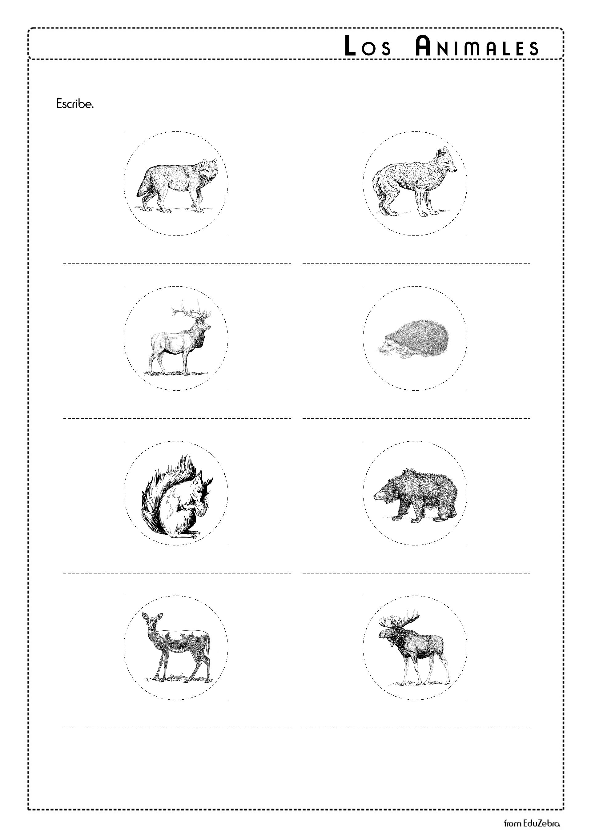 Animals In Spanish Forest Los Animales Del Bosque Worksheet Activities Animales Del Bosque Alce Actividades