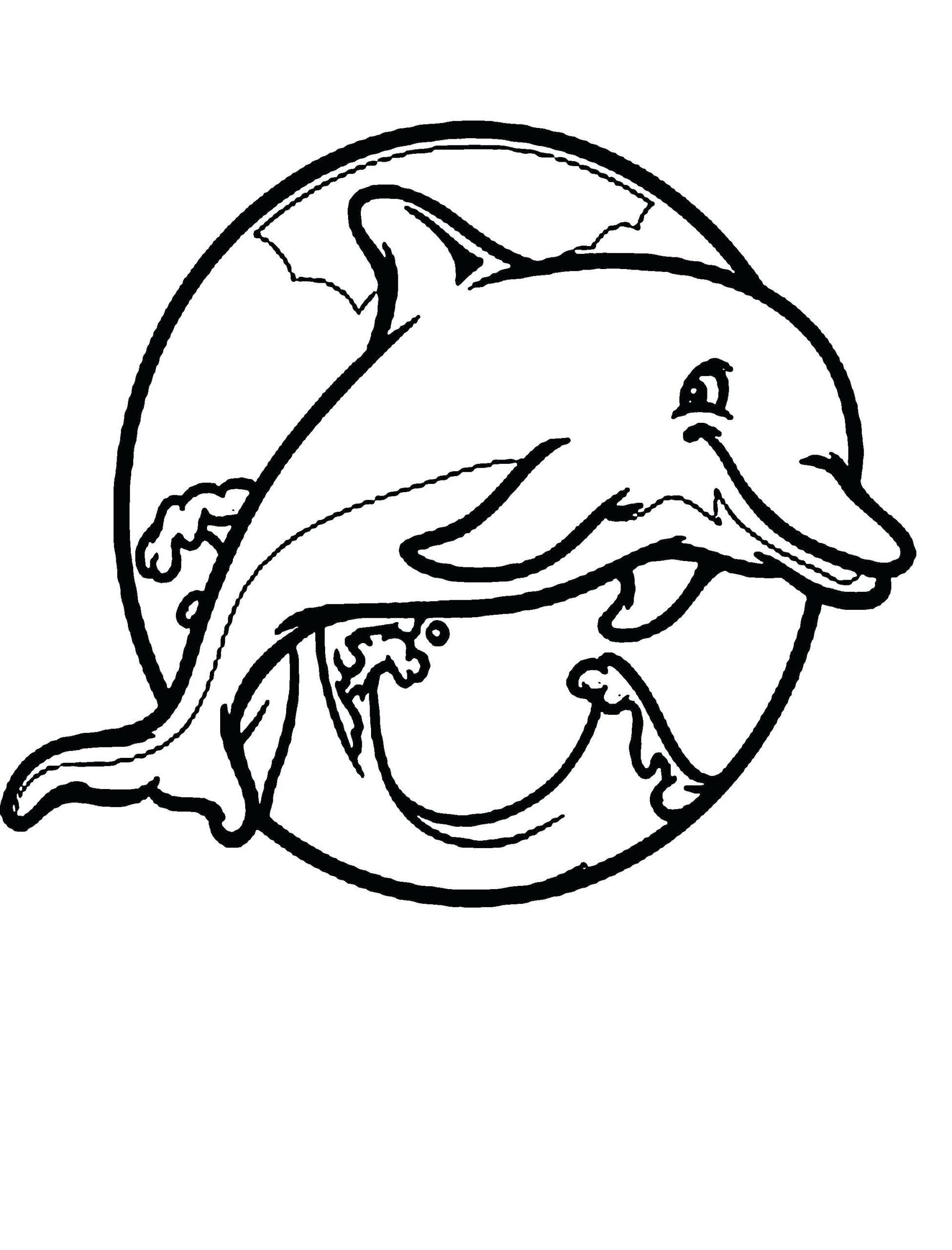 20 Baby Dolphin Coloring Pages in 2020 Dolphin coloring