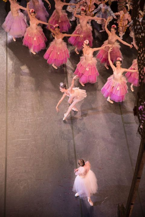 Pin By Ballet In The City On New York City Ballet With Images City Ballet Ballet Beautiful