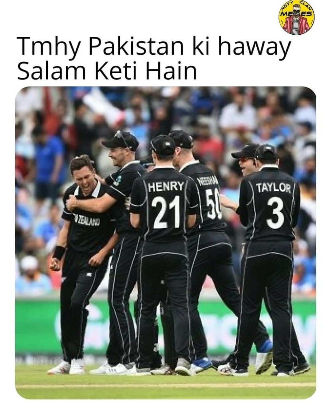 Pakistan Team Funny Images : pakistan, funny, images, Bleed, Green💚✌️❤️, Quotes, Novels,, Cricket, Quotes,, Funny, Memes