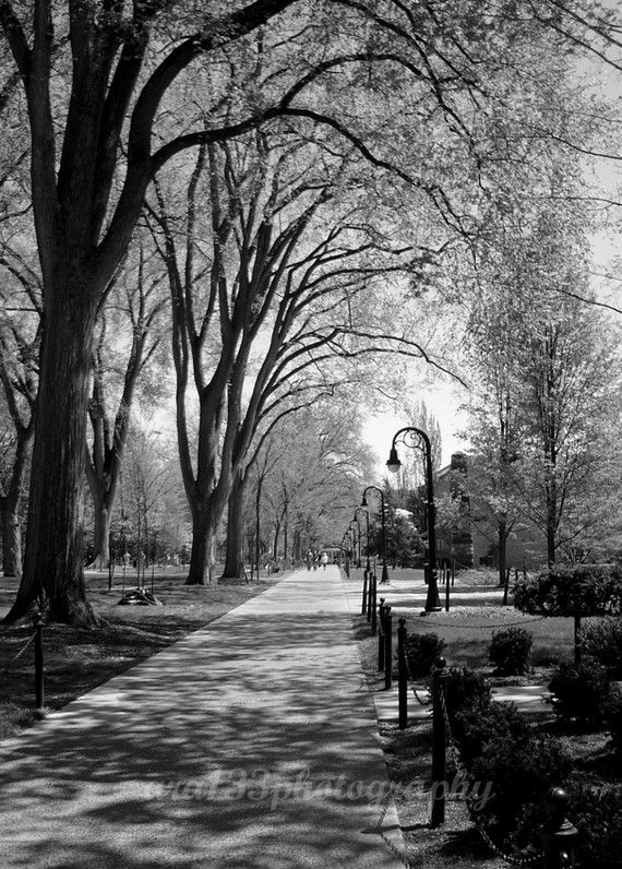Penn State photo
