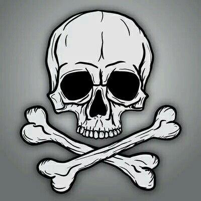 The Chief Symbol Of Pirate Land Pirates Hah Pinterest