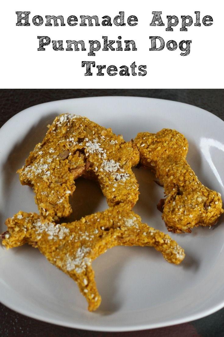 Homemade apple pumpkin dog treat recipe dog treats