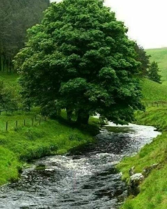 My inner landscape Photo is part of Beautiful places nature -