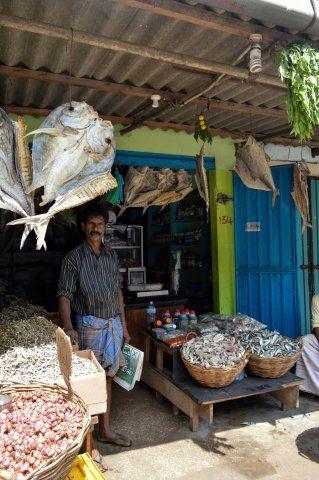 Dried Fish Store In Jaffna Market Sri Lanka