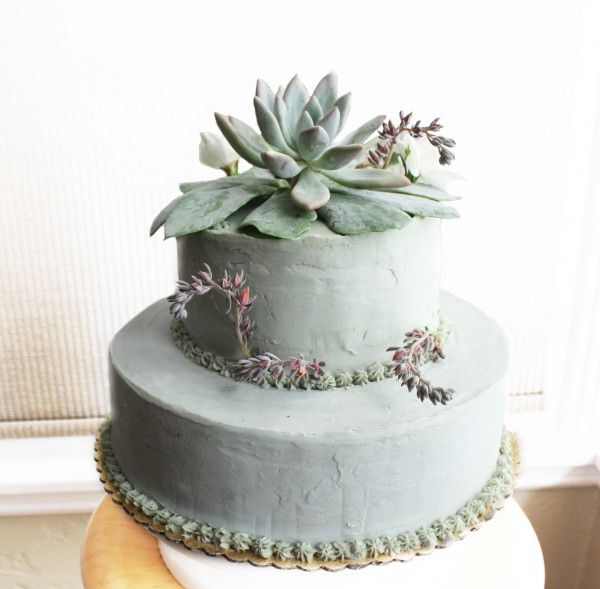 Vegan And Gluten Free Wedding Cake Ideas Alternative: Vegan Wedding Cake, Succulent Cake, Vegan