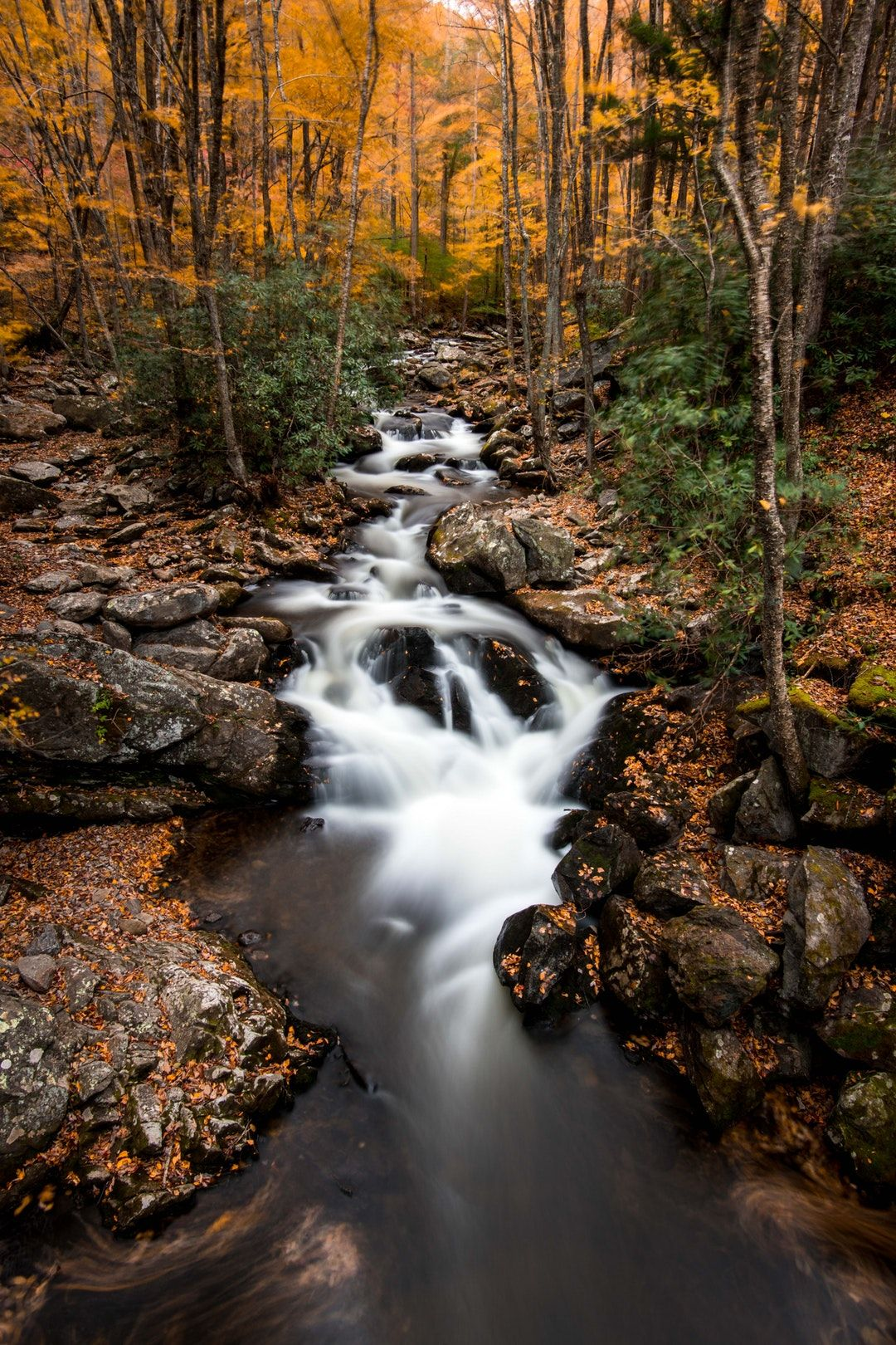 River Creek Stream And Tree Hd Photo By Nathan Anderson Nathananderson On Unsplash Time Lapse Photo Photo Water