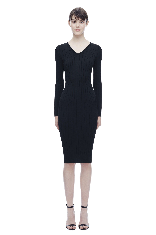 cf28bebb4cd Long Sleeve Wide Rib V-Neck Signature Dress