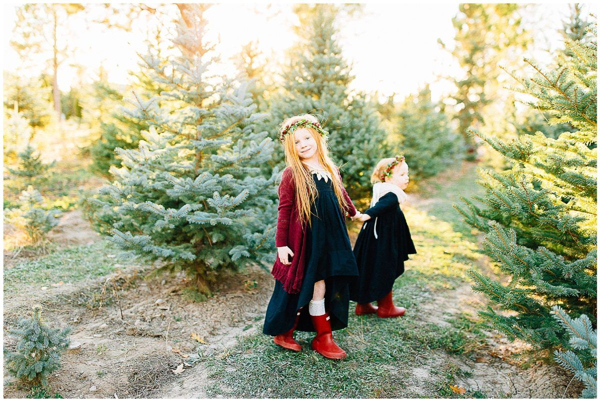 Christmas Mini Session Tree Farm Christmas Pictures Christmas Tree Farm Pictures Utah Photographers Fall Family Picture Outfits Winter Family Pictures