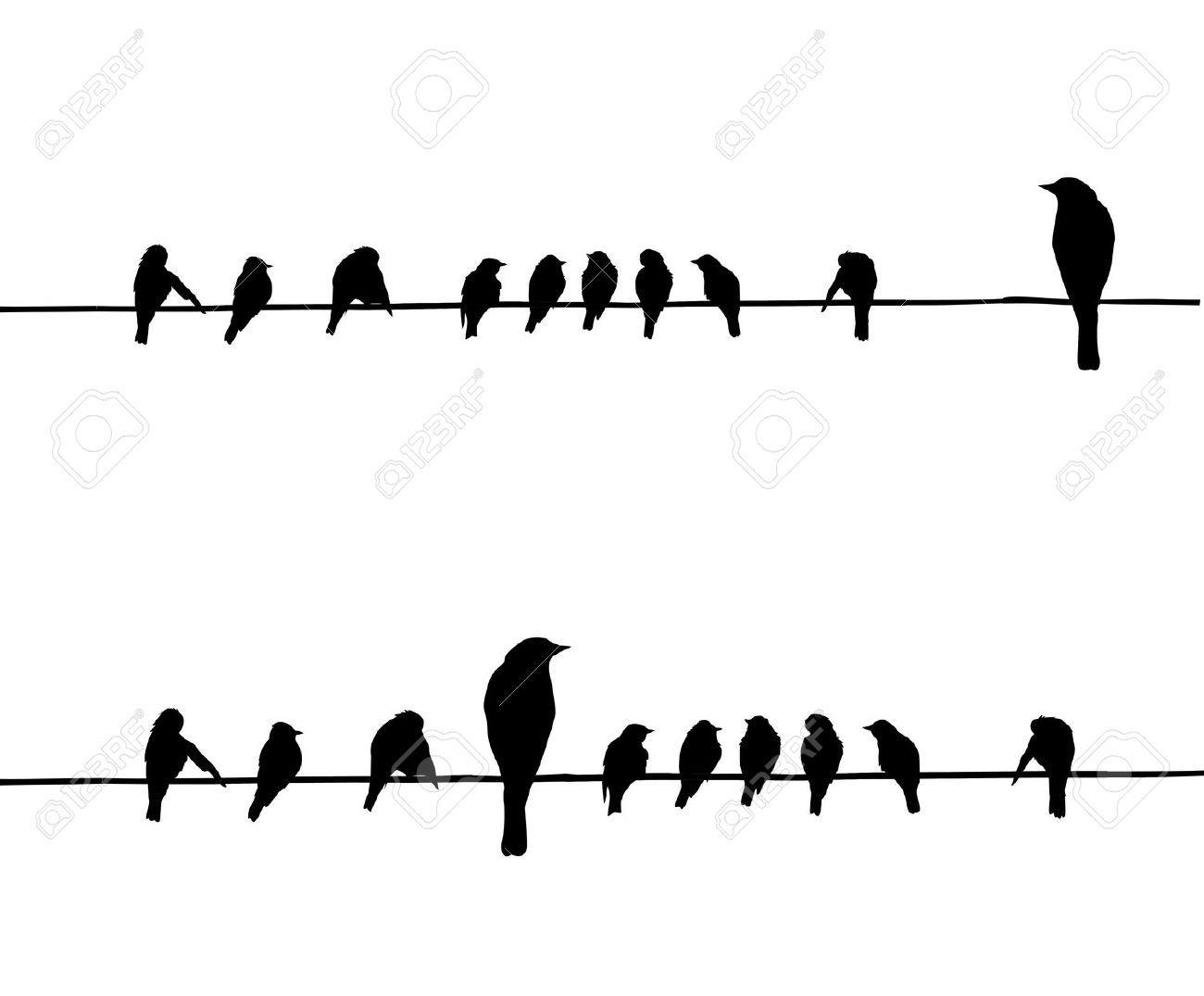 Silueta Aves Siluetas De Vector De Las Aves En Alambre Vectores