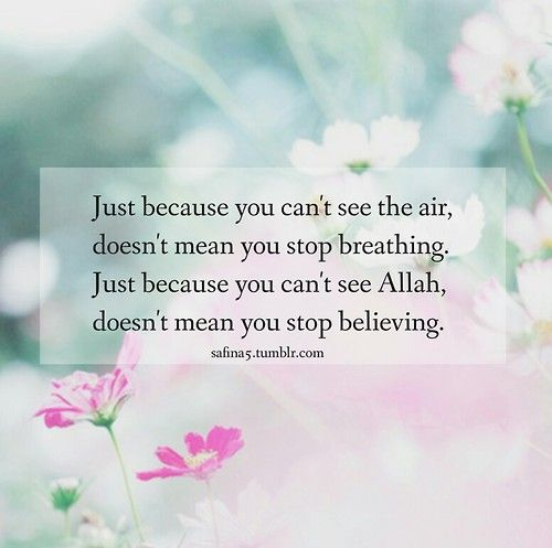 Attirant Donu0027t Stop Believing... Pink QuotesQuotes QuotesLove QuotesSo TrueIslam ...