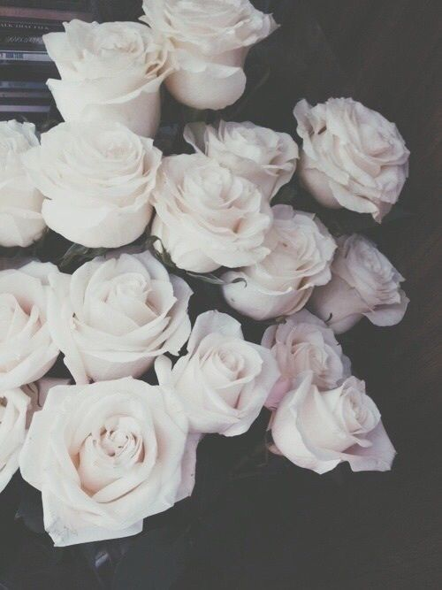 Black And White Roses Photography