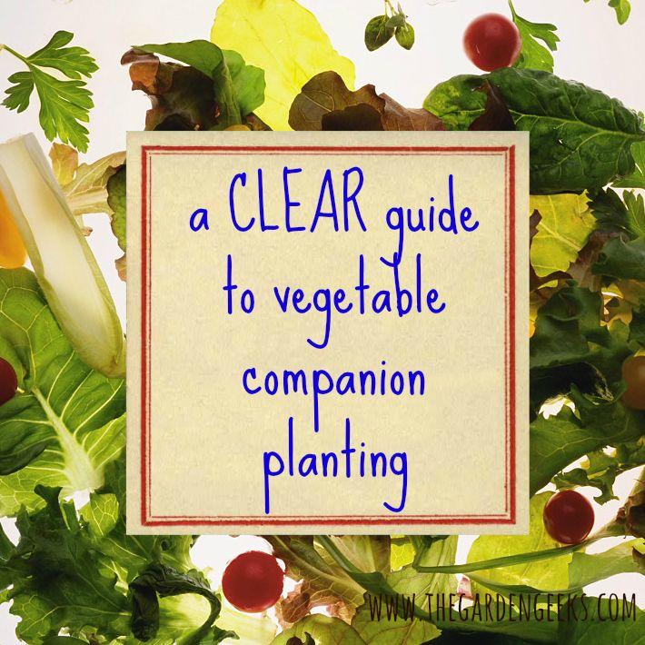 17 Best images about Garden Companion Planting – Sample Companion Planting Chart