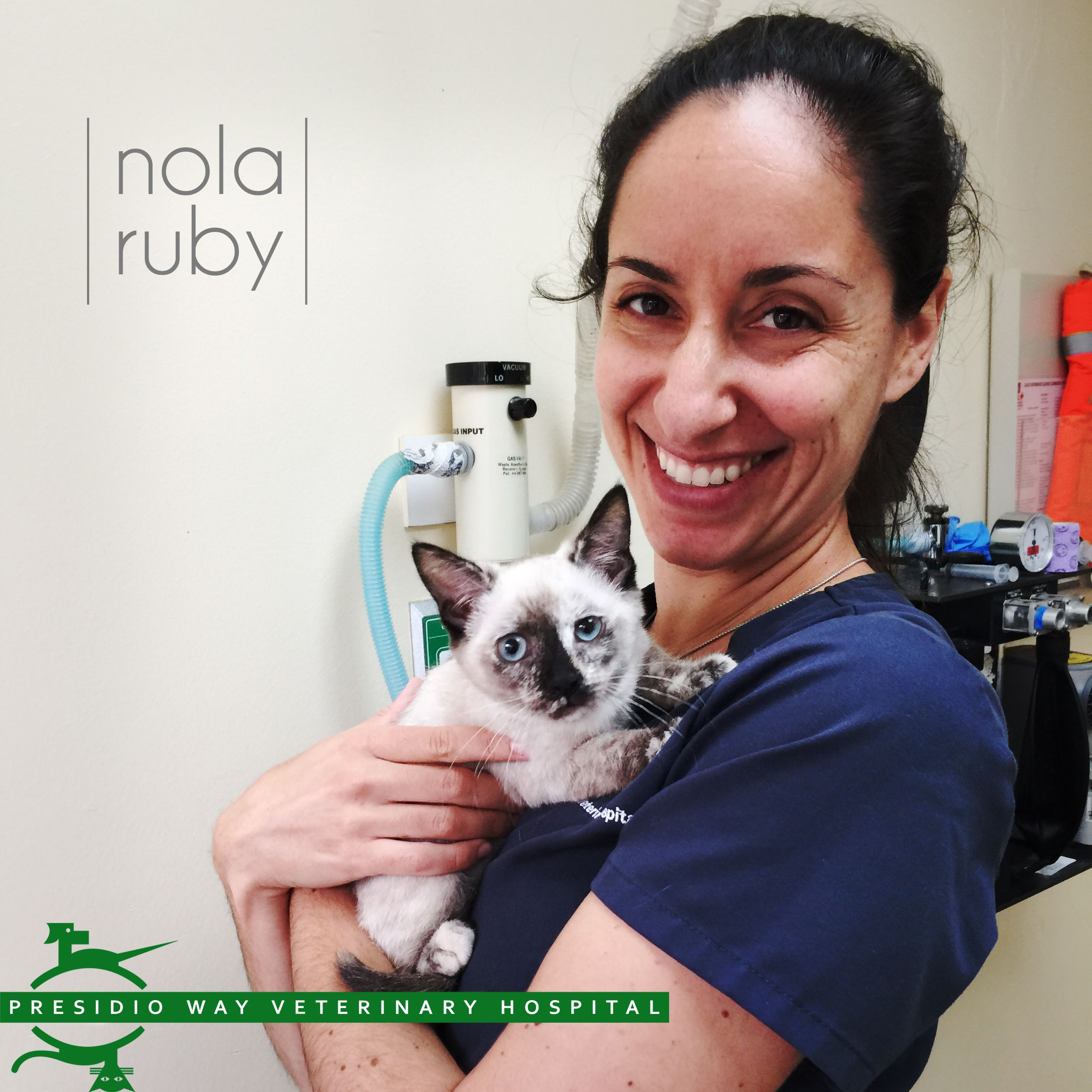 Meet Nola Ruby A Vision Of Sweetness Wrapped Up In The Arms Of Dr Kaila Helmer Don T You Think This 16 Week Siam Veterinary Hospital Veterinary Veterinarian